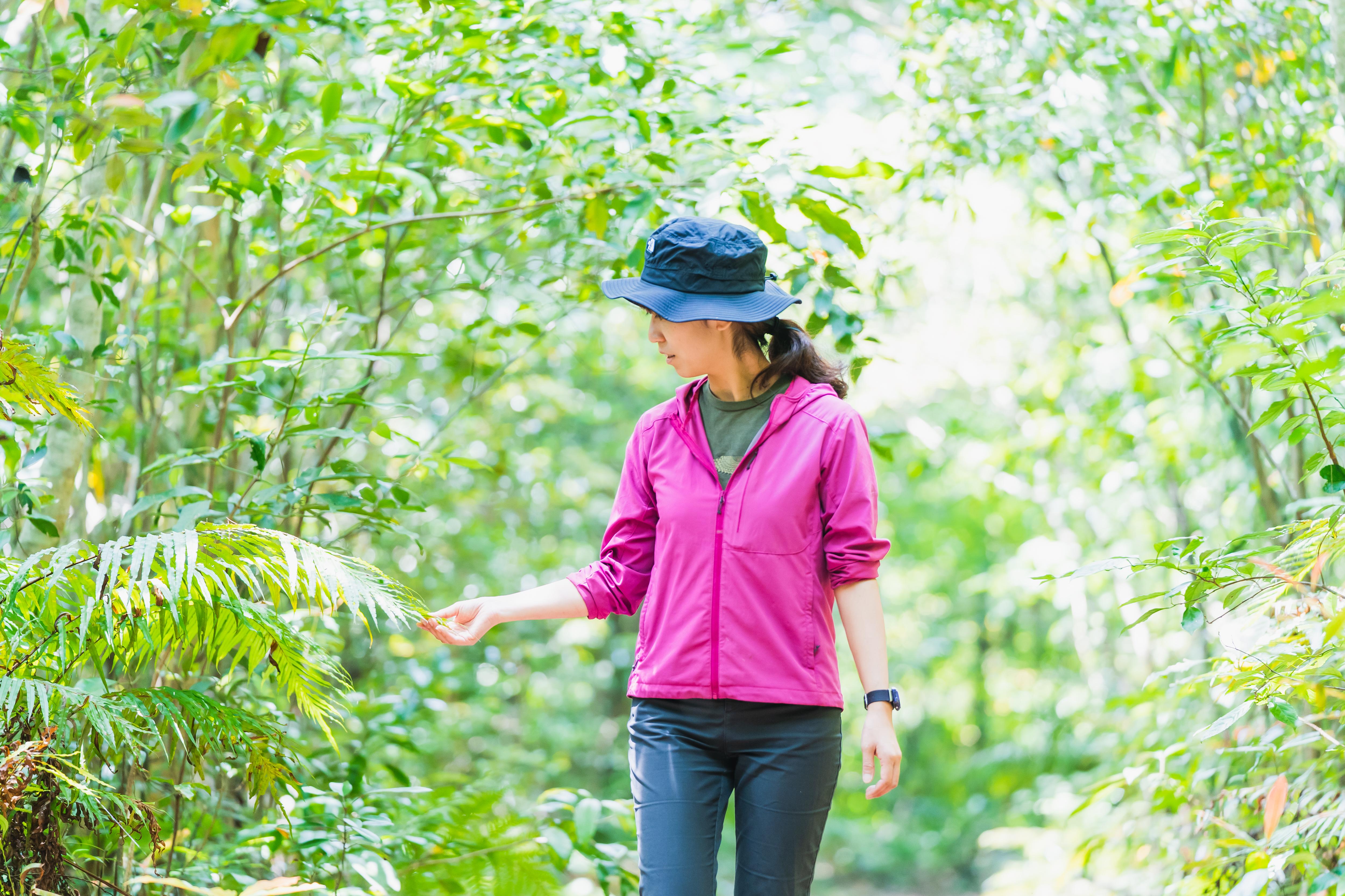Yanbaru Forest Walking Tour