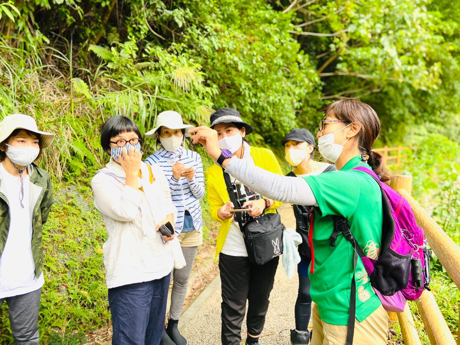 ネイチャーガイドと歩く森林公園ツアー